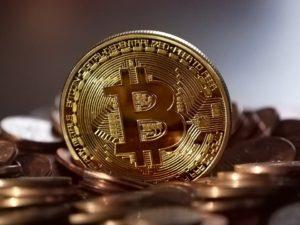 bitcoins address