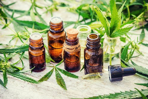 using cannabis blossom