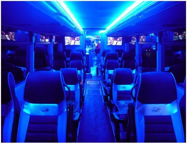 Best Party Bus